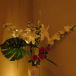 fleurs thaï